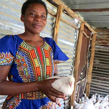 Christine's successful poultry business is now in its second year.